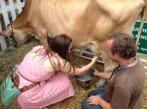 Caitlyn tries her ... um ... hand at milking a cow at the Indiana State Fair.